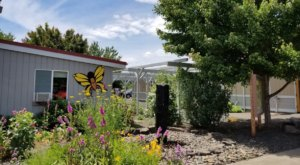 The Largest Butterfly House In Oregon Is A Magical Way To Spend An Afternoon