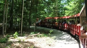 This Miniature Train Will Take You Around Virginia's Lakeside Park For A Picturesque Adventure