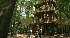 Challenge Yourself With A 3-Story Adventure Course At Lake Erie Canopy Tours In Ohio