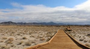 The Boardwalk Hike In Nevada That Leads To Incredibly Scenic Views
