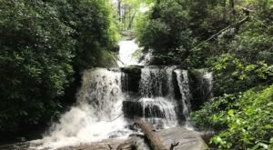 The Beginner-Friendly Waterfall Trail In Georgia That Is Perfect For A Family Hike