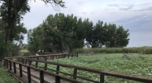 Niedrach Nature Trail and Gazebo Boardwalk In Colorado Leads To Incredibly Scenic Views