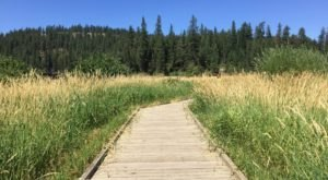 The Boardwalk Hike In Idaho That Leads To Incredibly Scenic Views