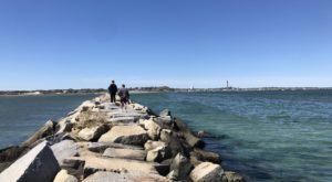 Enjoy Scenic Ocean Views Along The Long Point Lighthouse Trail In Massachusetts