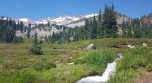Panther Meadow Trail, A 1.5 Mile Hike In Northern California, Takes You Through A Beautiful Meadow