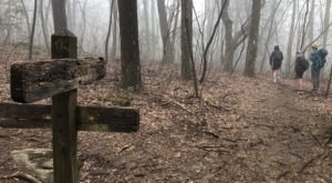 The Hike In Georgia That Will Lead You Straight To A Historic Graveyard