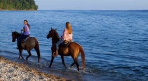 Ride Horses In Land Between The Lakes In Kentucky For a Memorable Experience