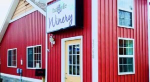 The Frozen Wine Slushies From This Michigan Winery Are A Delicious Summer Treat