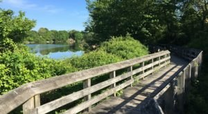 Take A Scenic Walk Along The Poquonnock River Walkway For A Beautiful Connecticut Outdoor Experience