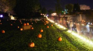 This Glowing Jack-O-Lantern Garden In Maryland Belongs On Your Autumn Bucket List