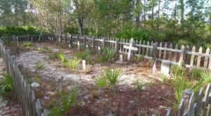 The Historic Hike In Florida That Will Lead You Straight To A Graveyard