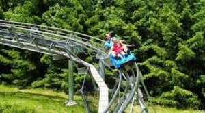 Try A Mountain Coaster, Zip Lining, Euro Bungee And More All At This One Pennsylvania Adventure Park