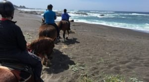 Go Horseback Riding On The Beach In Northern California For A Dreamy Adventure
