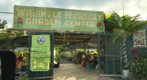 The Waiahole Nursery And Garden Center In Hawaii Is A Unique Place To Visit