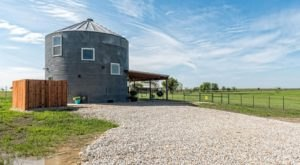 Spend The Night And Play With Llamas At This Silo Bed And Breakfast In Texas