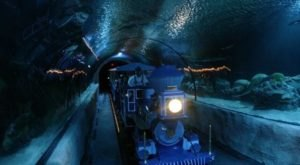 Ride Through An Enchanting Aquarium On This Underwater Train In Texas