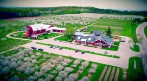 Enjoy Complimentary Wine, Shopping, And More At Lautenbach's Orchard Country, A Winery, Market, Orchard, And Vineyard In Wisconsin