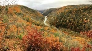 Visit The Grand Canyon Of PA, Pine Creek Gorge, For The Most Beautiful Leaf Peeping