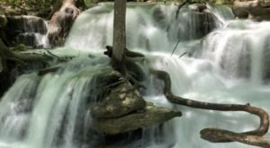 The Ultimate Bucket List For Anyone In Missouri Who Loves Waterfall Hikes
