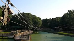 Take A Ride On The Longest Zipline In Louisiana At Gators & Friends