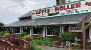 Offering Four Seasons Of Family Fun, Apple Holler In Wisconsin Is A Great Visit Year-Round
