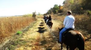 Take A Trail Ride On Horseback Through Jester Park In Iowa This Fall