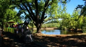 The Train Ride At El Dorado Orchards In Northern California Is Perfect For A Fall Day