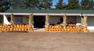 DeGroot Orchards Is A Family Owned Farm In Nebraska That Offers 22 Varieties Of Apples For Fall