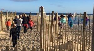 Wander Through A Spooky Beach Maze At Maryland's O.C.toberfest