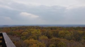Ending At A 60' Observation Tower, Parnell Tower Trail Takes You To The Most Spectacular Fall Foliage In Wisconsin