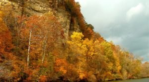 Take A Fall Colors Cruise Near Nashville With Blue Heron Cruises For A Beautiful And Scenic Adventure