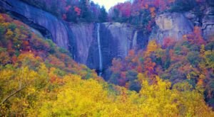 Surround Yourself With Fall Foliage On Hickory Nut Falls Trail, An Easy 1.5-Mile Hike In North Carolina