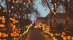 Walk Through A Village Of Over 3,000 Glowing Pumpkins At The Utah State Fair Park