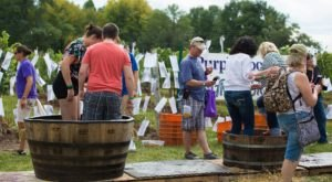 Stomp Your Own Grapes And Celebrate Wine At The Purple Foot Festival In New York