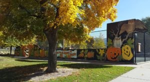 You'll See Pumpkins In A Whole New Way At North Logan's Annual Pumpkin Walk
