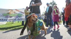 The Spooky Pooch Parade Is One Of Greater Cleveland's Most Adorable Fall Traditions