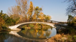 Walk Across The Elizabeth Park Bridges For A Gorgeous View Of Michigan's Fall Colors