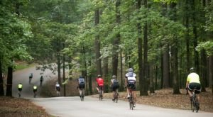 Lincoln Parish Park Has One Of The Top Biking Trails In The Country