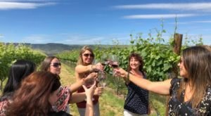 Twisted Vine Wine Tours In Idaho Will Take You On A Delicious Journey Through Wine Country