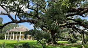 Few People Know About The Haunted Oak Trees At The Houmas House In Louisiana