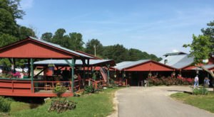 The Restaurant At Shatley Springs Is A Delicious Stop In North Carolina For Southern Food Galore