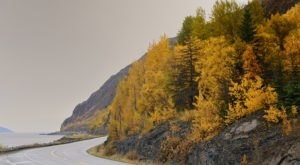 Take A 2-Hour Drive Through Alaska To See This Year's Beautiful Fall Colors