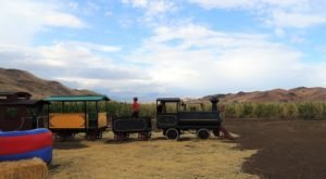 The Pumpkin Patch Train Ride At Silver Valley Farm In Nevada Is Perfect For A Fall Day