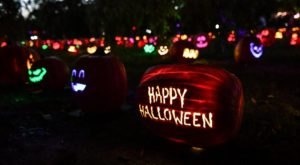 Walk Through A Village Of Over 5,000 Of Glowing Pumpkins At Jack's Pumpkin Glow In Nashville