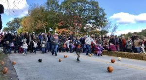 The Tiny Michigan Town Of Montague That Transforms Into A Pumpkin Wonderland Each Year