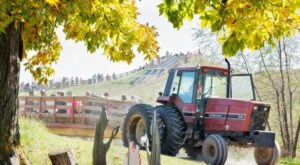 Center Grove Orchard In Iowa Offers 18 Acres Of Apple Picking Fall Fun
