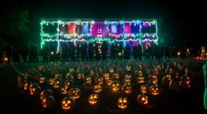 Walk Through Over 7,000 Glowing Pumpkins At New York's Great Jack O'Lantern Blaze