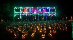 Walk Through Over 7,000 Glowing Pumpkins At New York's Great Jack O'Lantern Blaze