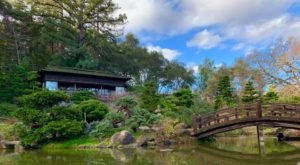 Plan A Tranquil Outing At Northern California's Oldest Japanese Garden, The 18-Acre Hakone Gardens