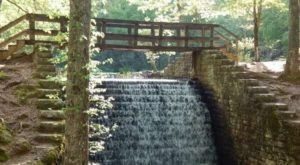 Enjoy A Short And Sweet Hike To A Tishomingo State Park Waterfall Along The CCC Pond Trail In Mississippi